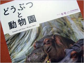 会誌『どうぶつと動物園』