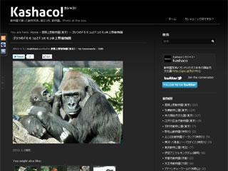 動物園写真サイト「カシャコ!」